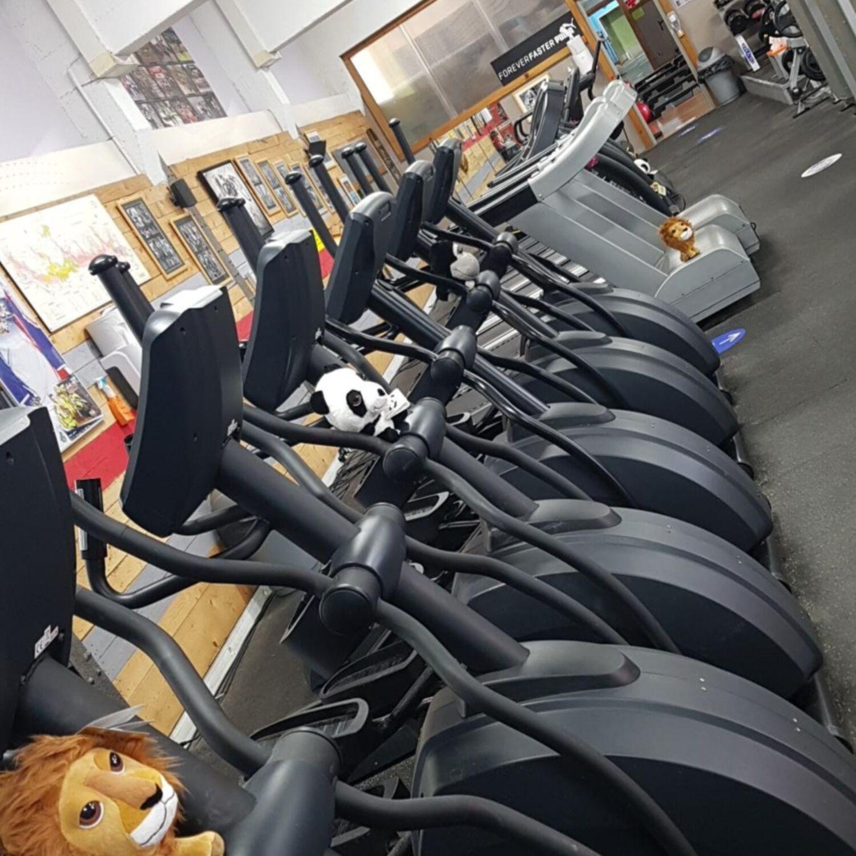 Quelles conditions pour la réouverture des salles de sport ?