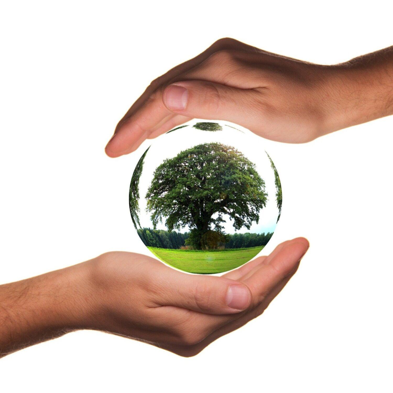 Transacteurs : un site sur la transition écologique solidaire