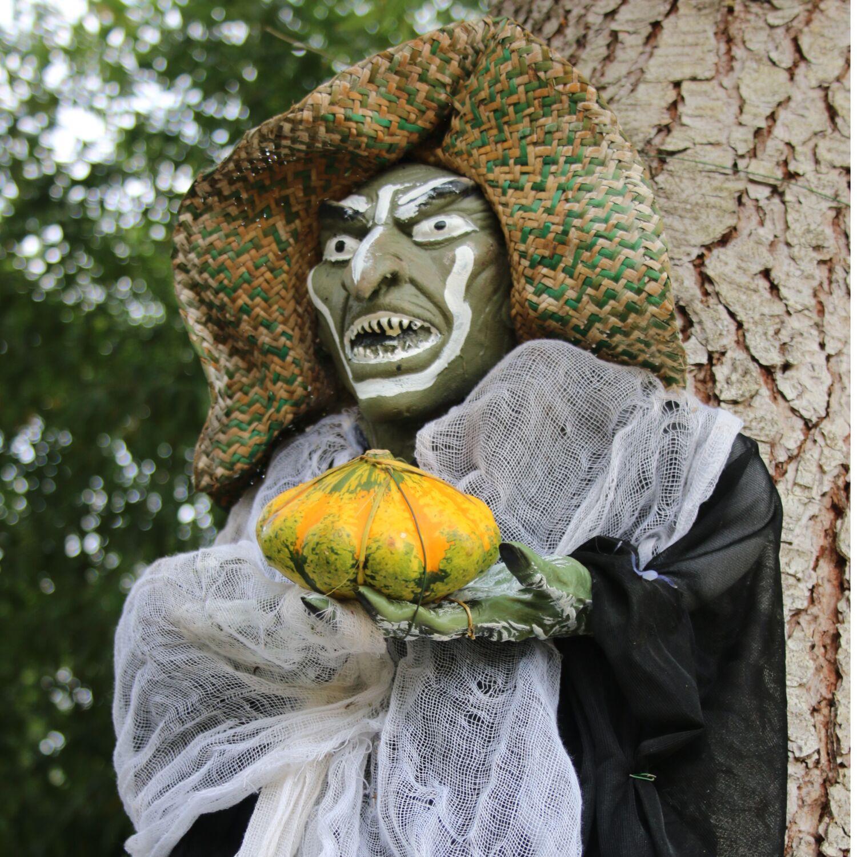 Halloween s'invite au Tropical Parc pour les vacances !