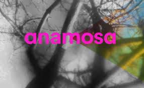Anamosa, la maison des essais inattendus