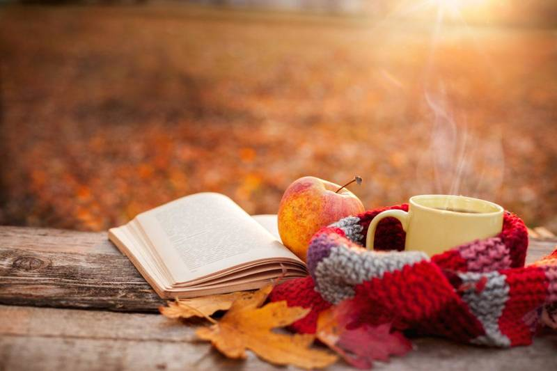 Nos idées lectures d'automne en jeunesse