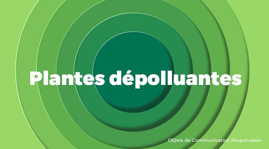 Univers - Plantes dépolluantes - Goodies responsables - Cadoetik