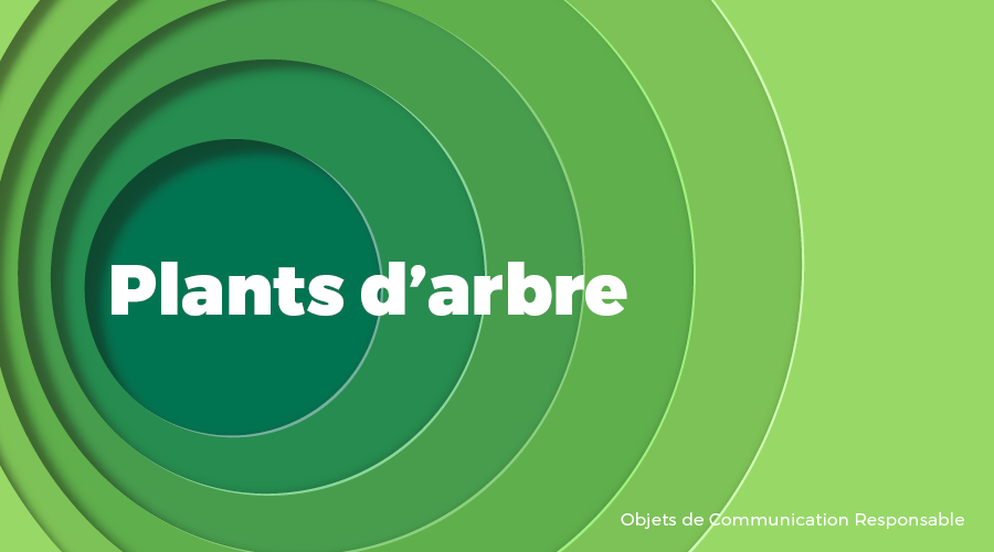 Univers - Plants d'arbre - Goodies responsables - Cadoetik