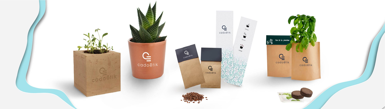 goodies graines - goodies plante