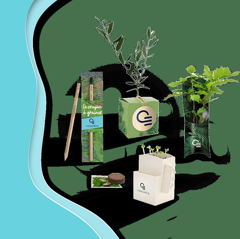Cadoétik - expert du goodies végétal