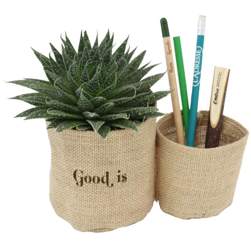 Mini plante verte publicitaire dépolluante avec pot en jute