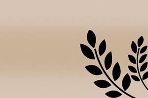 matière fibre de blé cadoetik