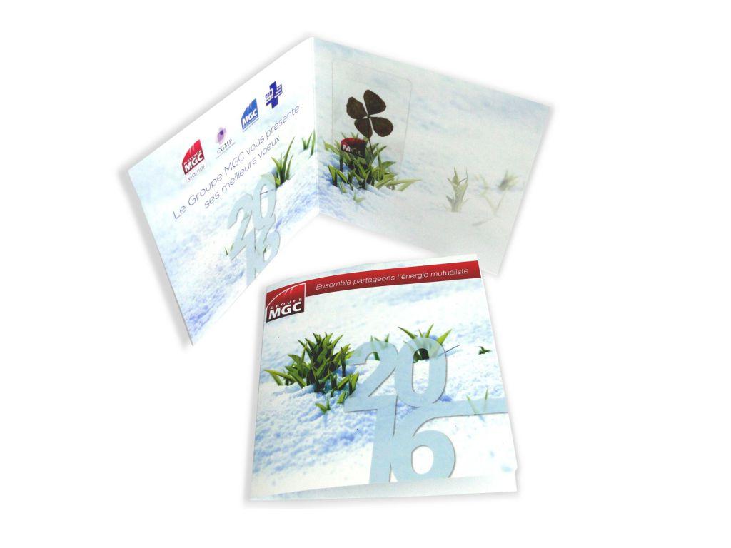 Carte Trèfle à 4 feuilles séché - sachet de graines personnalisé