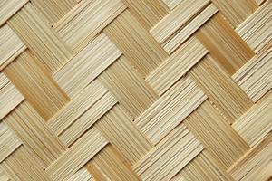 matière palme de bambou cadoetik