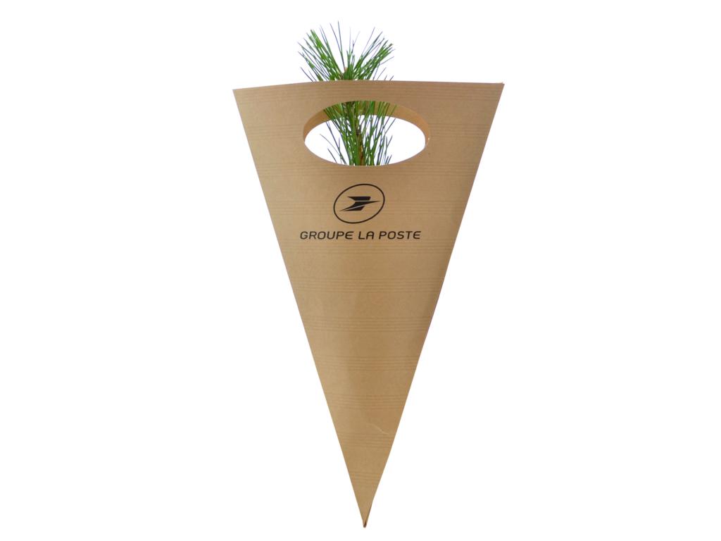 Cornet Kraft pour Plants de Résineux - Plant d'arbre personnalisable