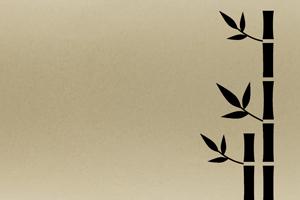 matière fibre de bambou cadoetik