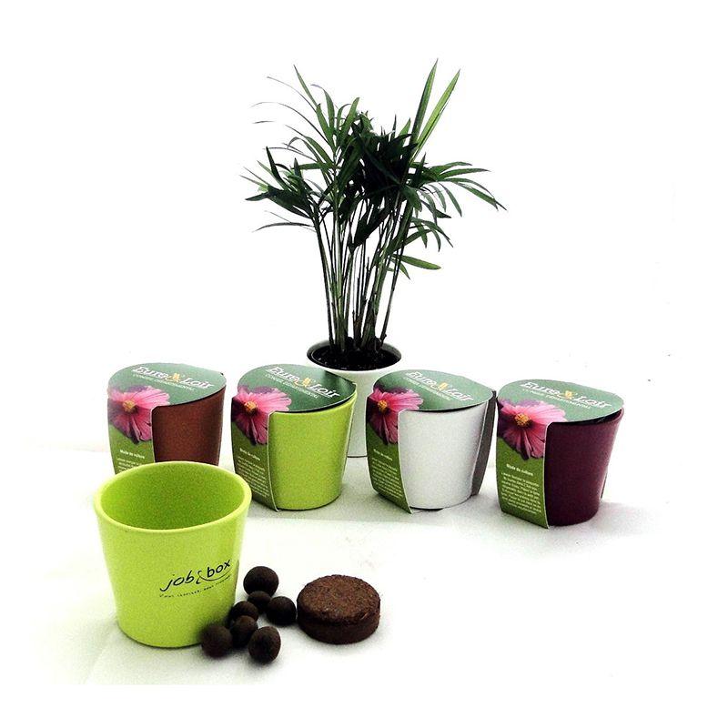 Cadeau publicitaire - kit de plantation publicitaire pot céramique