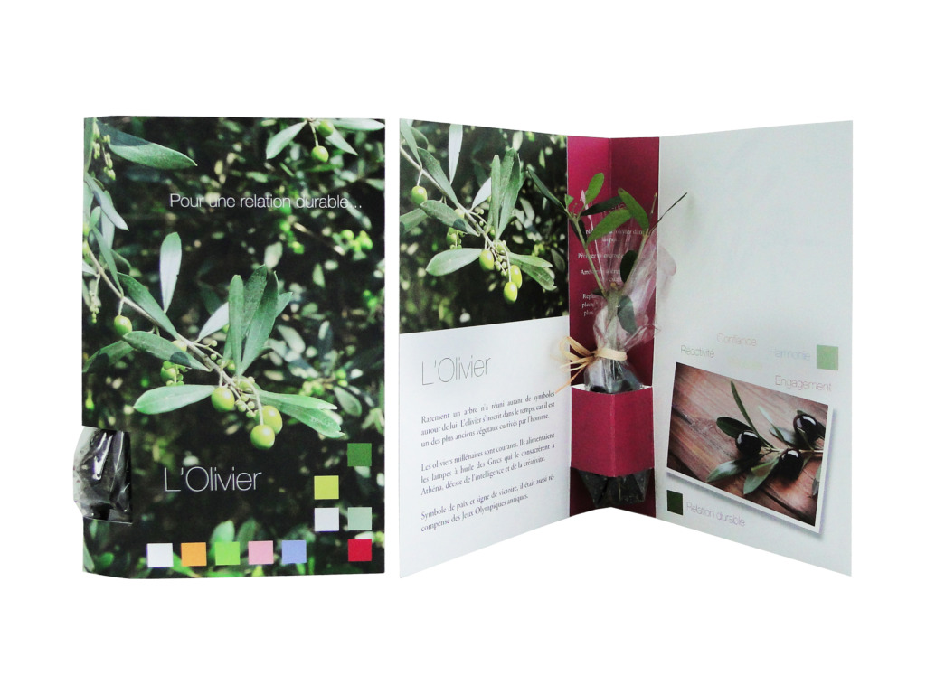 La Plante postale Standard - Plant d'arbre publicitaire