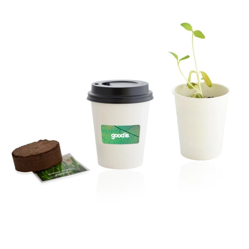 Kit plantation pot carton - plantes publicitaires