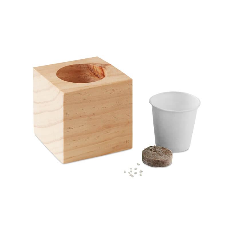 Graines à planter - Cadeau d'entreprise - Pot en bois avec graine  Minthy