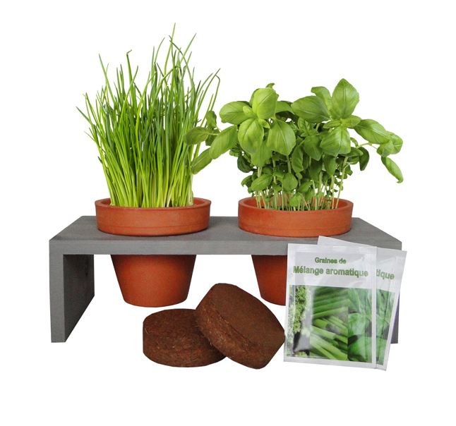 Cadeau publicitaire végétal - Plateau Duo aromatiques