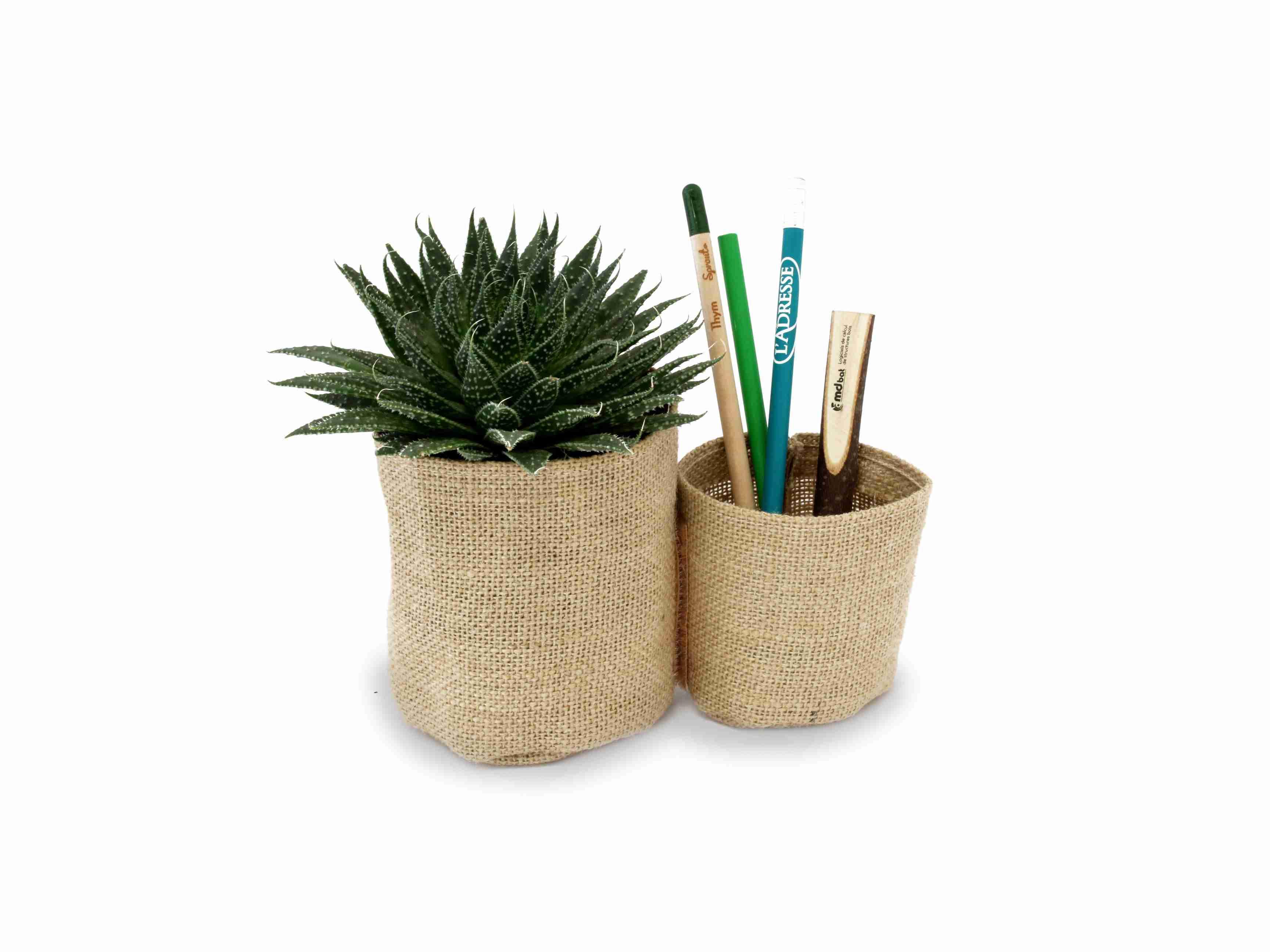 Plante dépolluante publicitaire double pots en toile de jute - cadeau publicitaire écologique