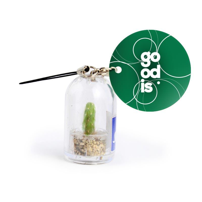 Goodies entreprise - Porte-clés publicitaire avec mini cactus