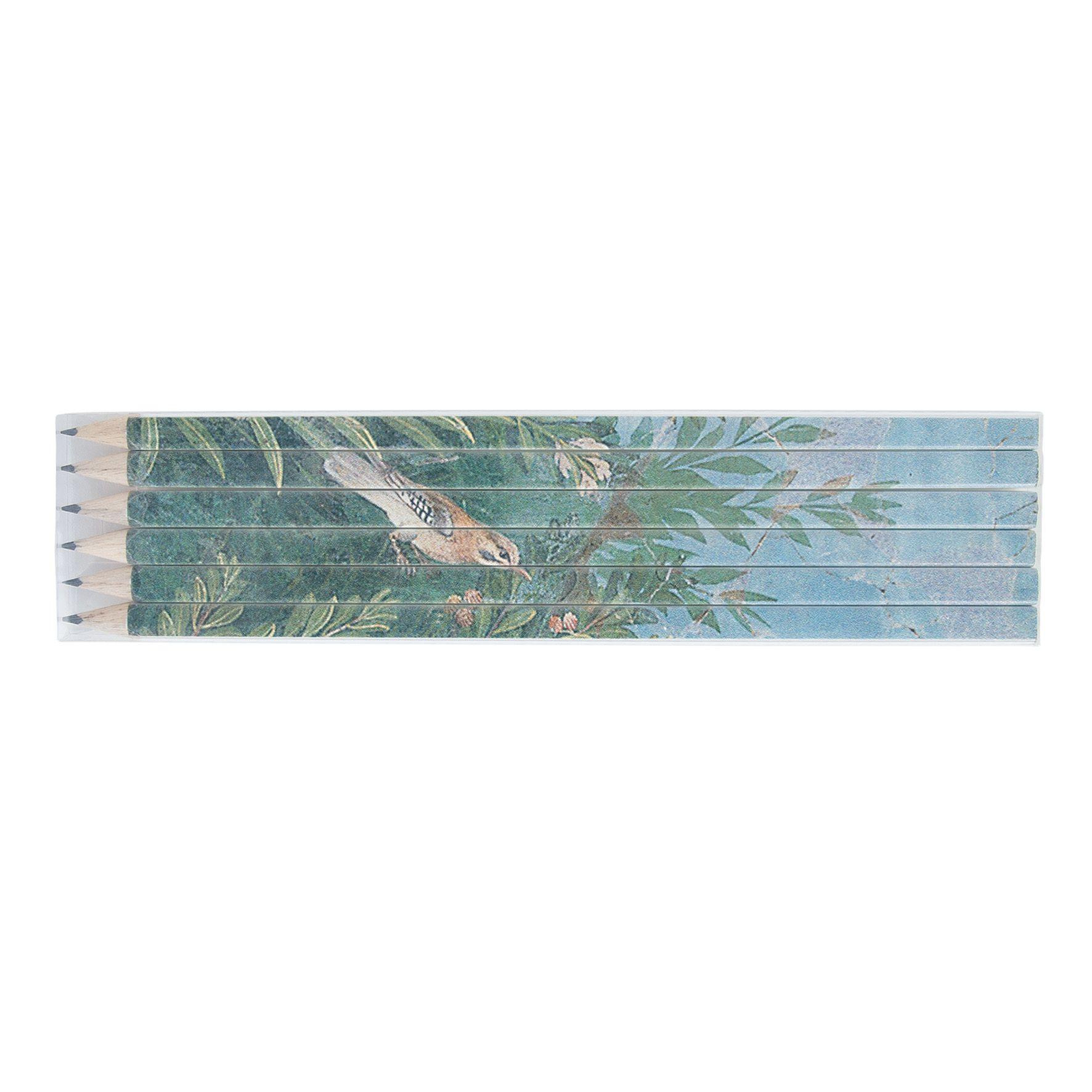 goodies orginal - set 6 crayons papier publicitaire écolos quadri 17,6
