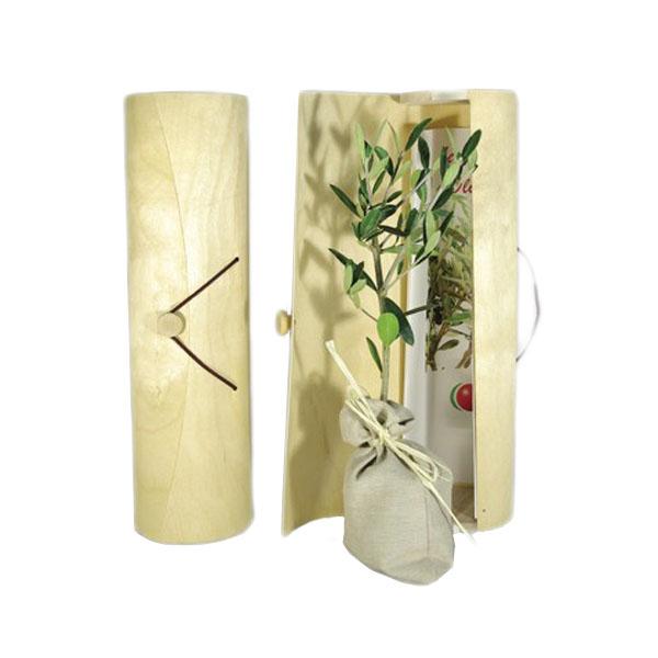 Plant arbre en tube bois avec cordelette - cadeau d'entreprise écologique …