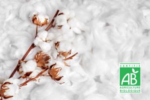 matière coton bio cadoetik