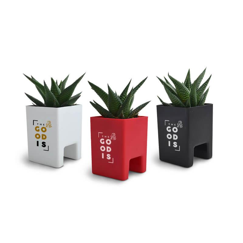 Cadeau d'entreprise végétal - Le Pot ' Ordi personnalisable