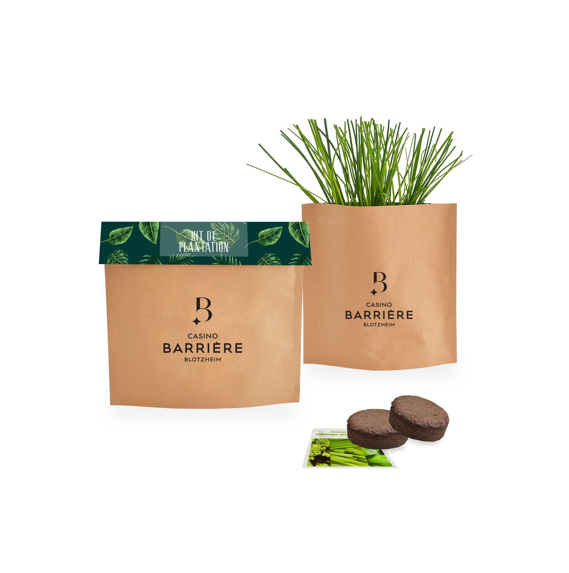 Pot Kraft Easy livraion express - cadeau publicitaire végétal