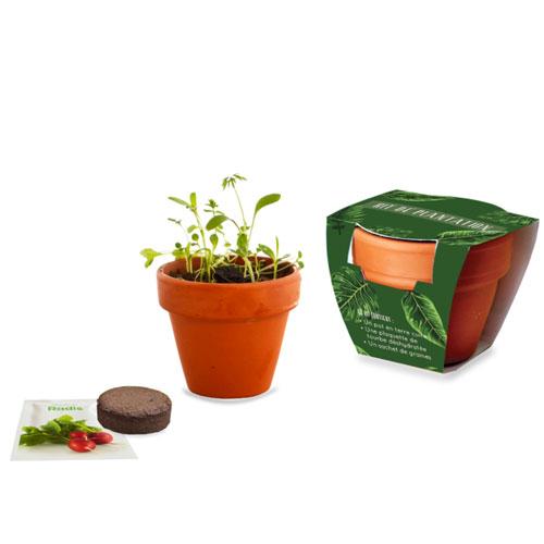 Kit de plantation publicitaire Nature - cadeau publicitaire végétal