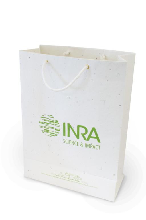 Sac en papier recyclé publicitaire - sac personnalisé tapis de semis M