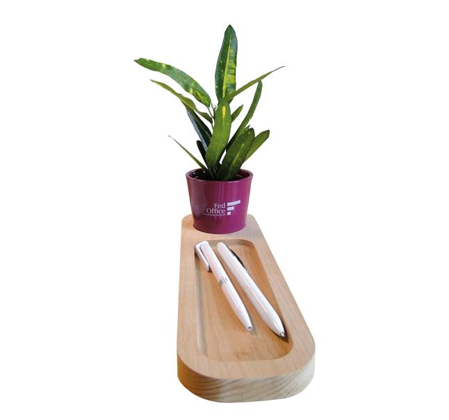 """Plateau """"Nature au bureau"""" avec plante - cadeau publicitaire écologique"""