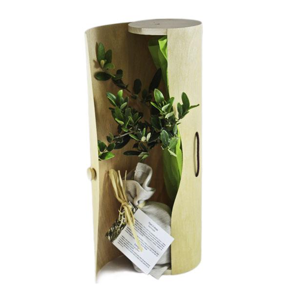Plant arbre publicitaire en tube bois déroulé - Prestige - cadeau d'entreprise végétal