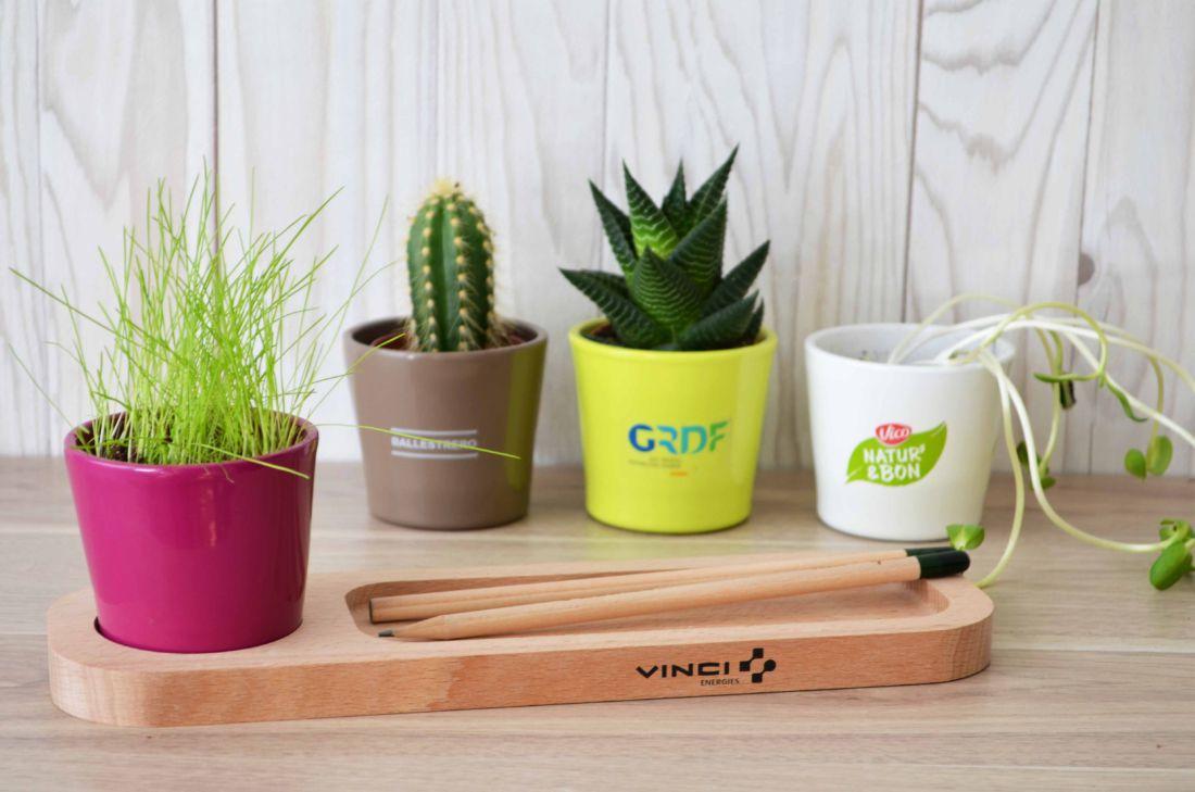 """Plateau """"Nature au bureau"""" avec plante - plante personnalisée"""