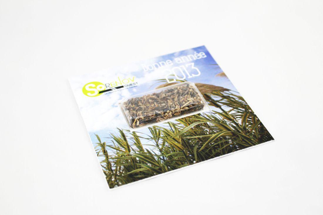 Carte visio graines carrée - graines publicitaires