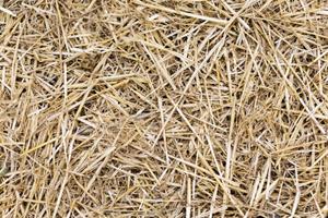 matière paille de blé cadoetik