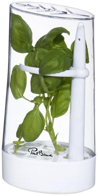Conservateur d'herbes publicitaire Versil - accessoire de cuisine publicitaire