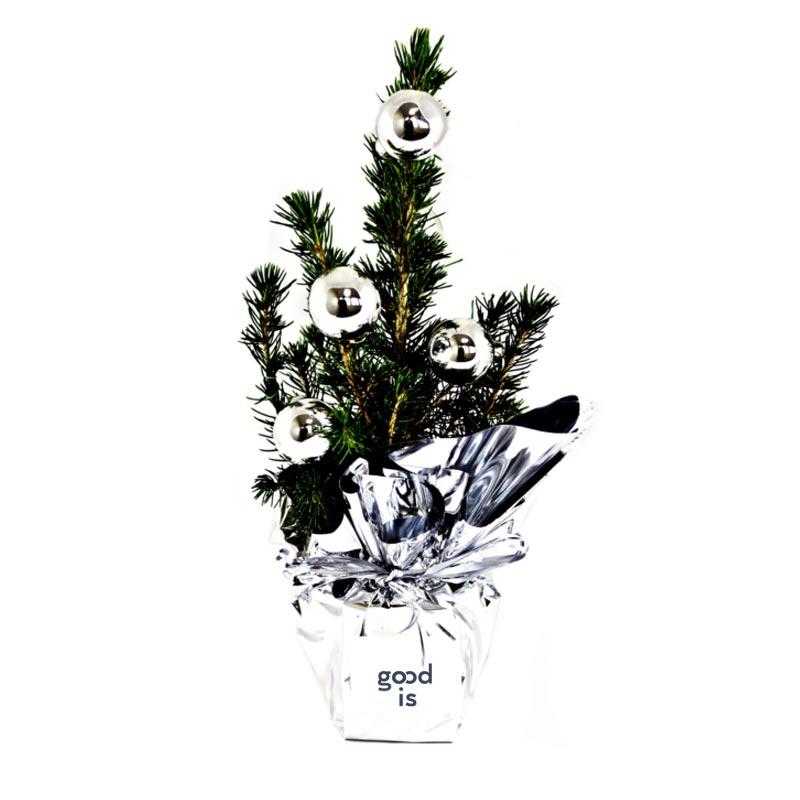 Sapin en pot de 10 cm de diamètre avec déco