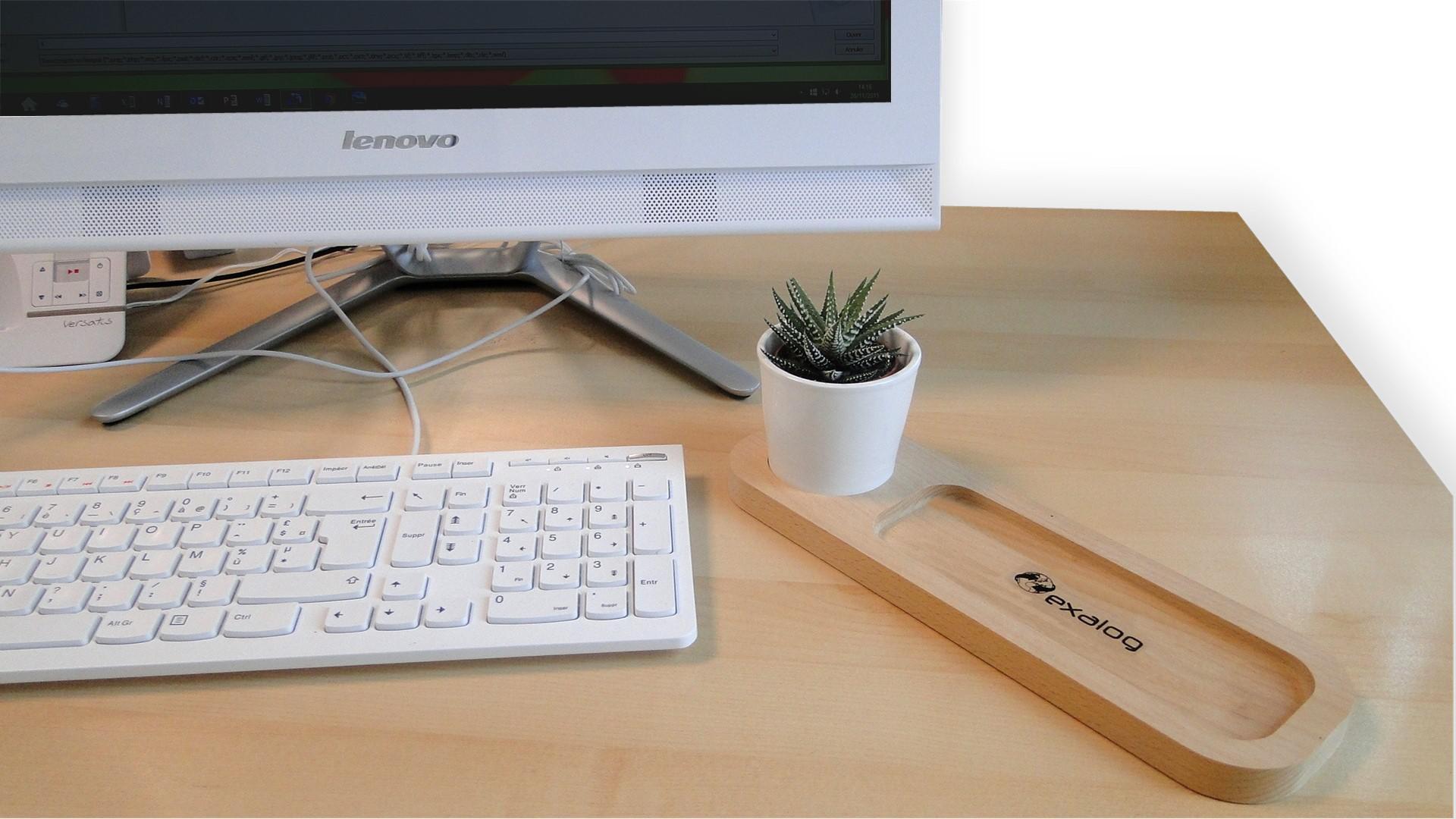 """Plateau """"Nature au bureau"""" avec plante - cadeau publicitaire végétal"""