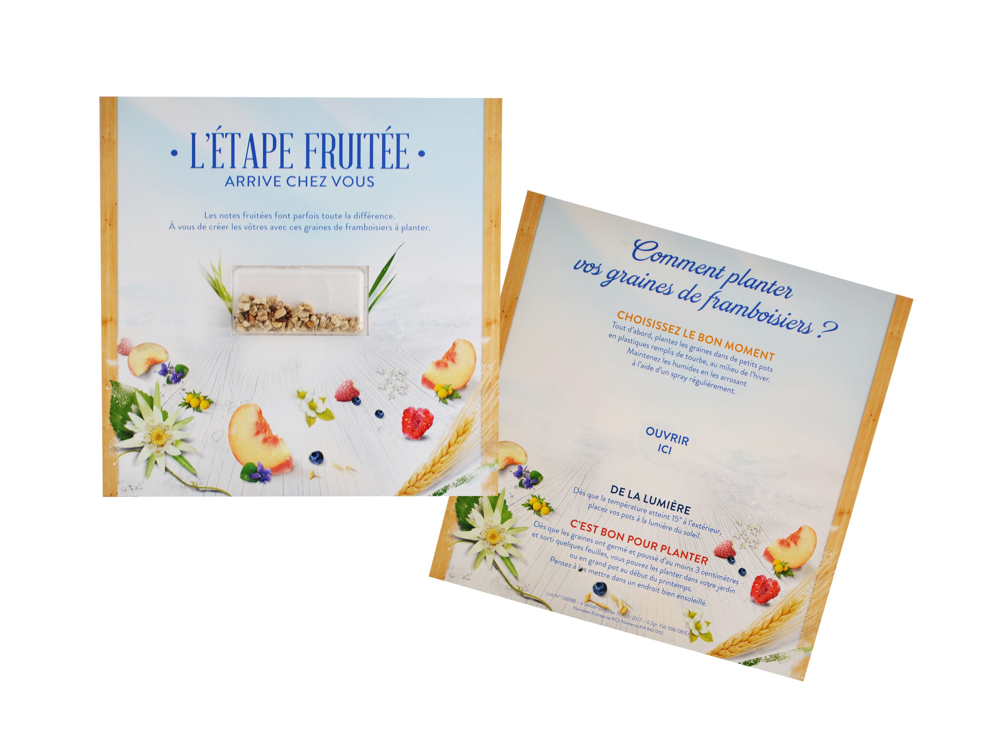 Cadeau publicitaire écologique - Carte visio-graines carrée 15 x 15 cm