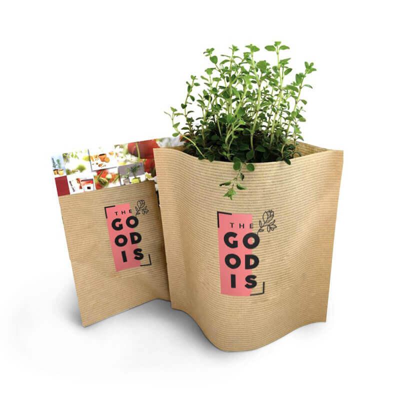 Cadeau d'entreprise végétal - Le petit pot Kraft Pop-up Easy