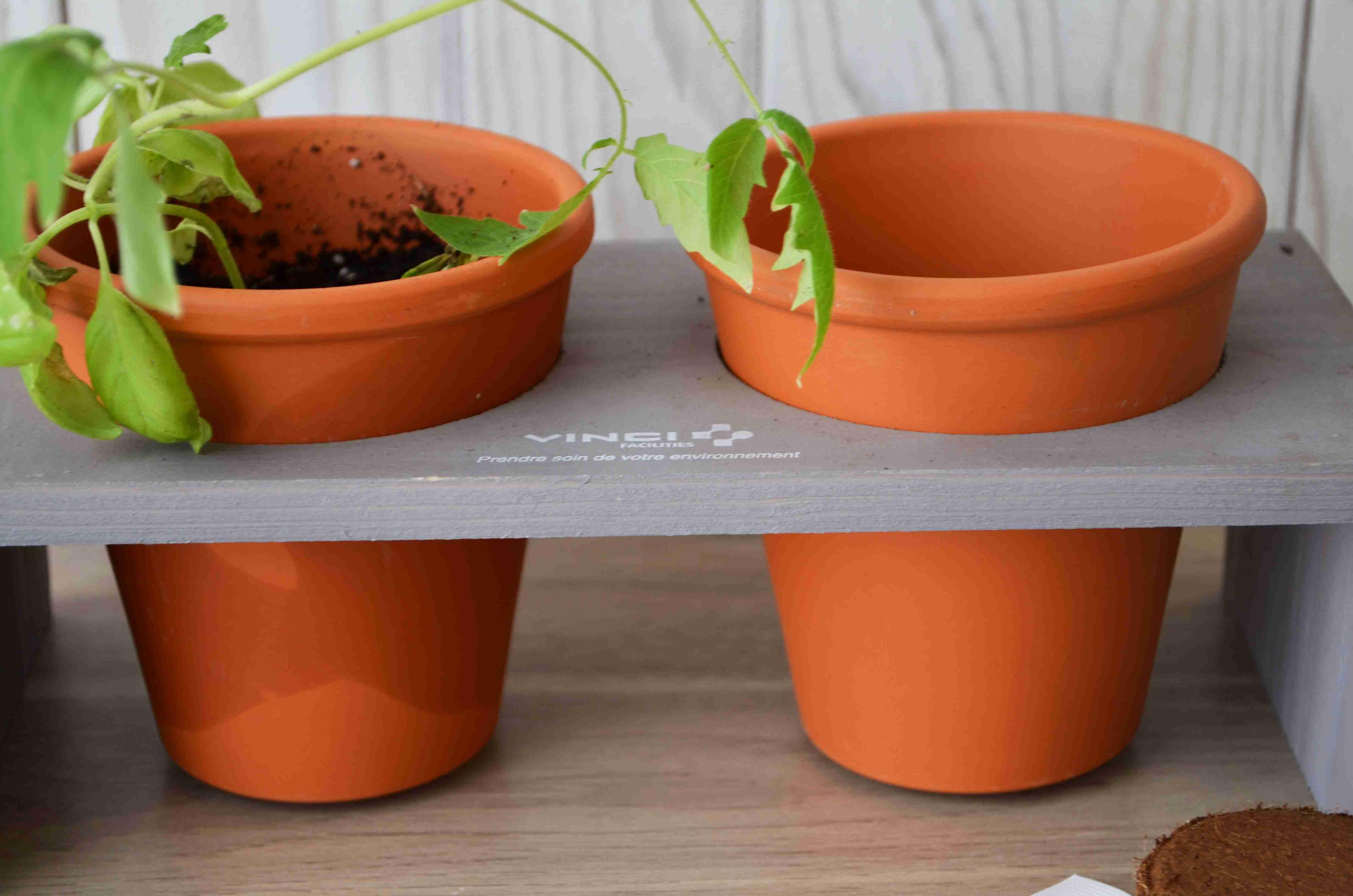 Cadeau d'entreprise végétal - Plateau Duo aromatiques