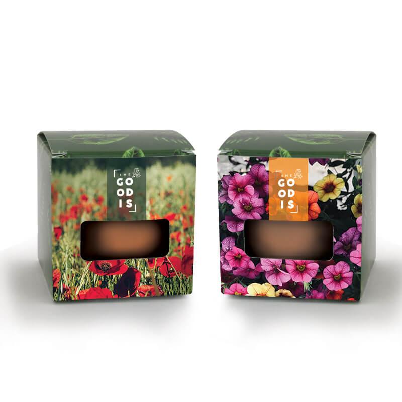 Cadeau d'entreprise végétal - Kit de plantation publicitaire - Cube de plantation express std