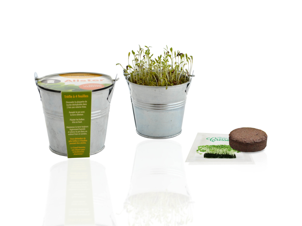 Kit de semis  mini pot zinc - Kit de plantation publicitaire