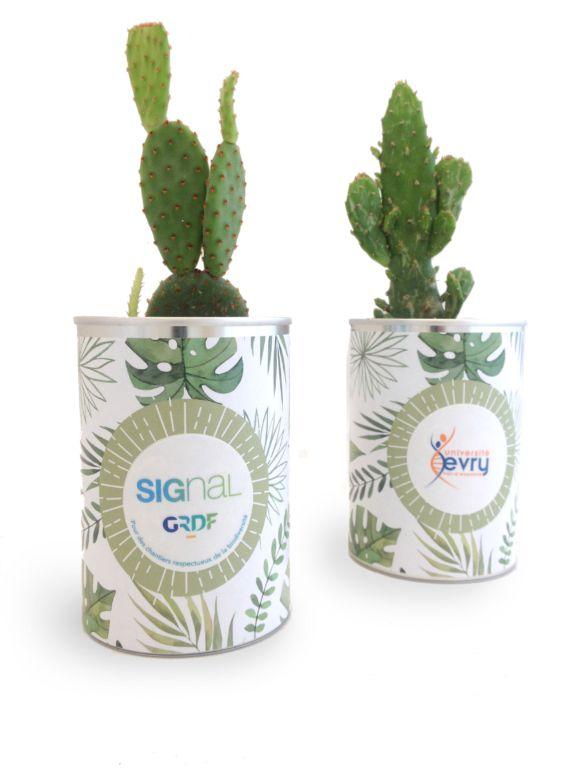 Cadeau d'entreprise écologique - Canette à plante Cactus