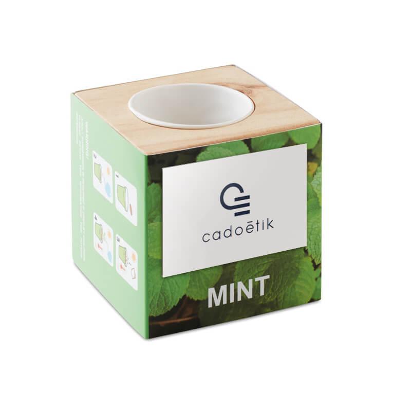 Pot en bois avec graine  Minthy - Graines à planter pour Pro