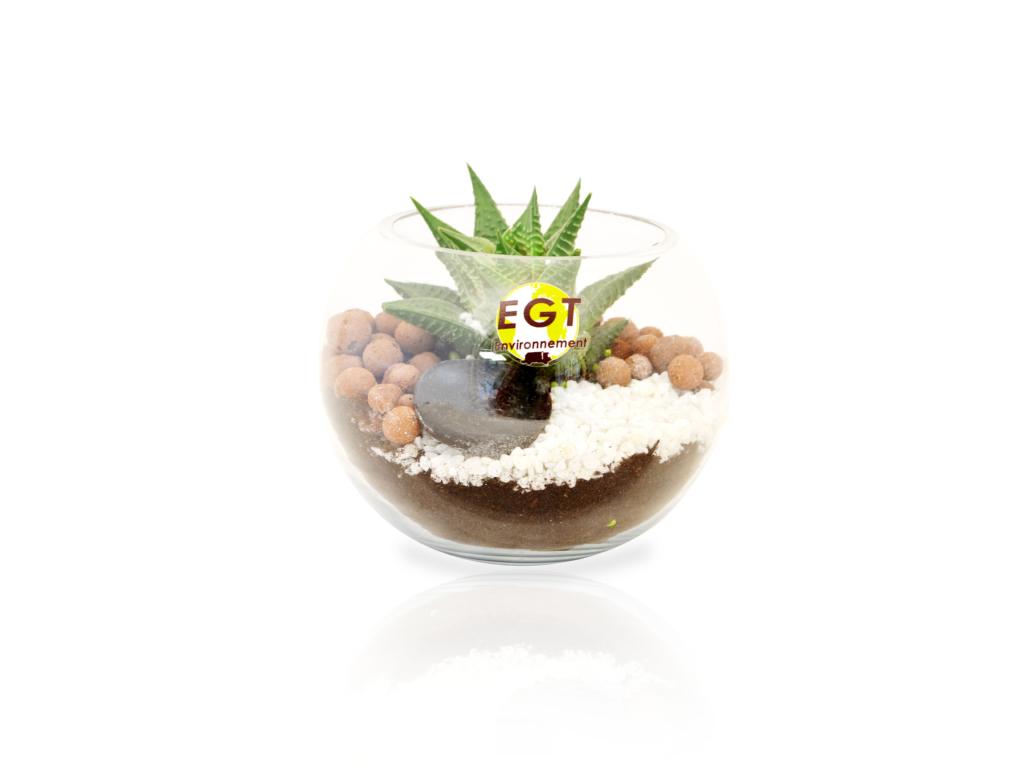 cadeau d'entreprise végétal - Terrarium personnalisable PM