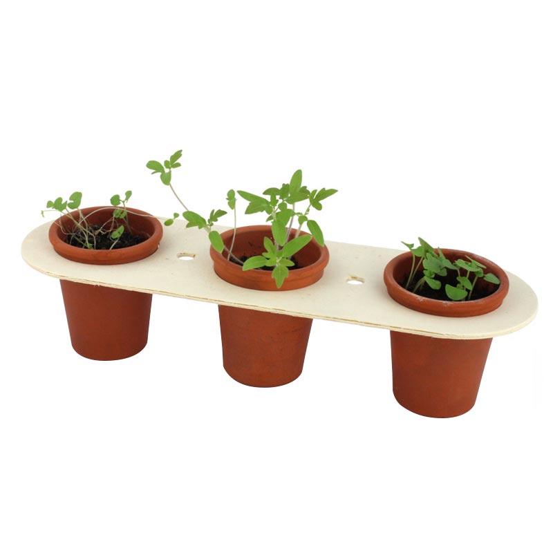 Kit de plantation publicitaire trio - cadeau d'entreprise végétal