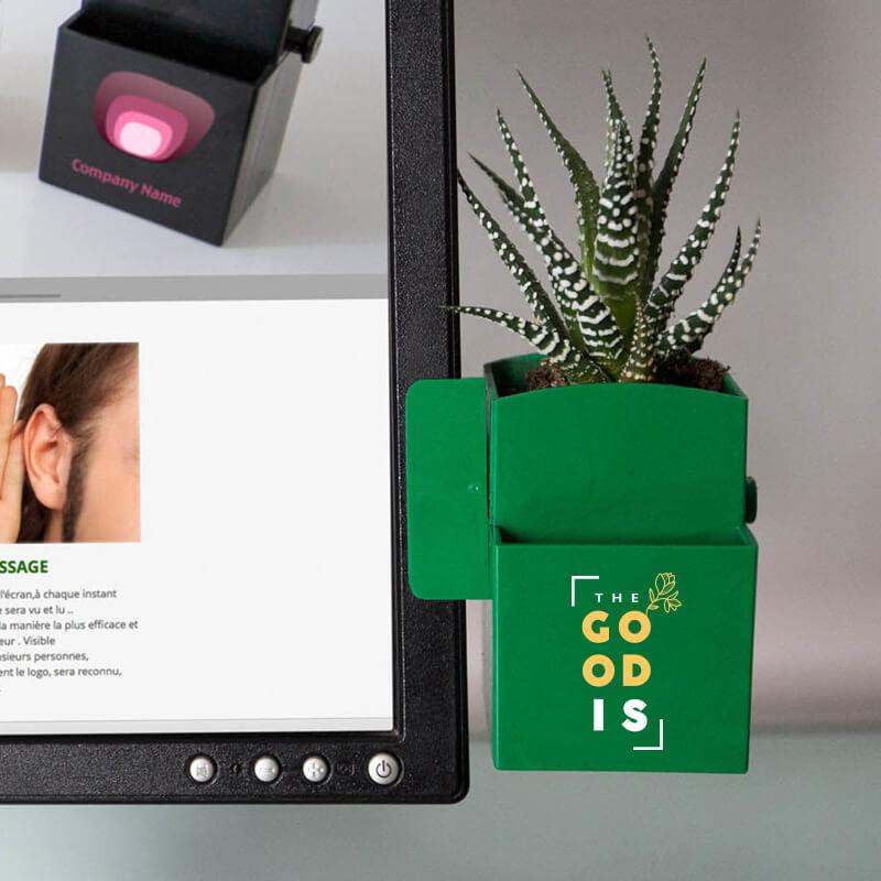 La Végétal-Box Kit graines - Cadeau d'entreprise écologique