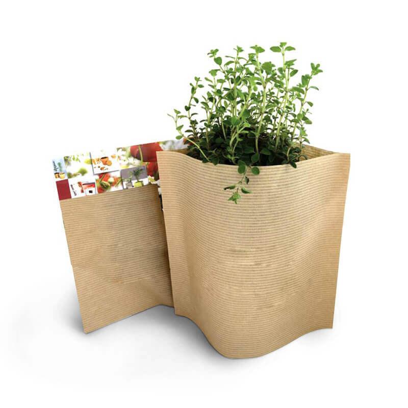 Goodies écologique - Le petit pot Kraft Pop-up Easy