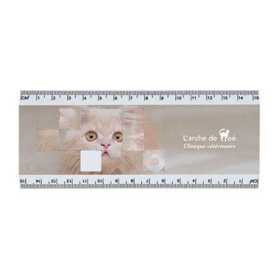 Goodies - Règle publicitaire 15 cm puzzle Tetrix