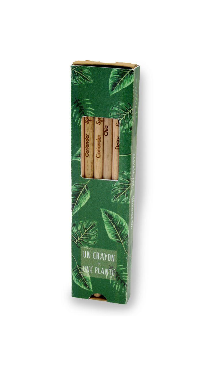 Coffret 6 Crayon à graines publicitaires - crayons de couleur publicitaires